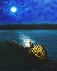 Seeking the Creator