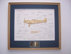 Multi signed Aeroframe