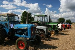 Tractors in the Auction
