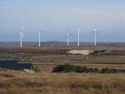 The Electric Windmill Farm