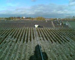 Roof repair on asbestos sheeting
