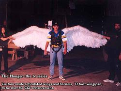 """4m articulated feather wings --- """"The HUNGER"""" tv series"""