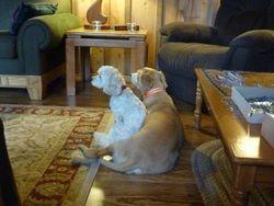 Macy and Kiki