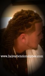Braided Dreads by Bee