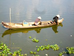 Local fishing on the Chidwin River