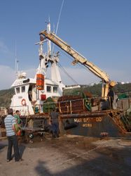 A larger trawler uses a crane to unload
