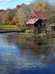 Woodson Mill Blue