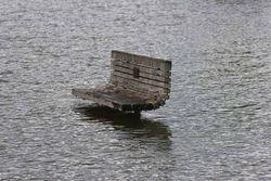 Waikato River flood