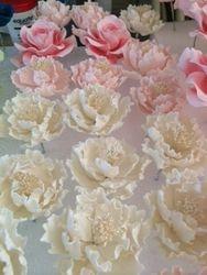 pink/white peony