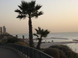 Playa de Netanya