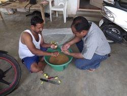 Seeds - Pre-sowing Preparation