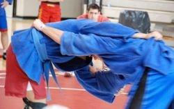 2008 Freestyle Sambo Championships