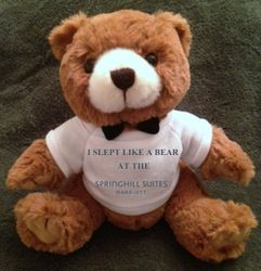 """Teddy Bears. """"I SLEPT LIKE A BEAR AT THE SPRINGHILL SUITES"""" - 9"""" Tall.  Makes a unique gift!"""