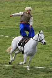 Cossack Rider 1
