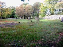 Clava Cairns Wider Angle
