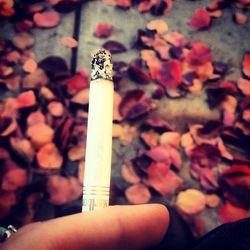 Fall Smoke