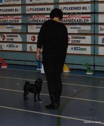 Egon Olsen and me