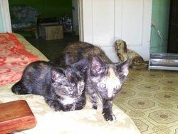Carla & Lucy