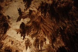 Carlesbad Caverns NM