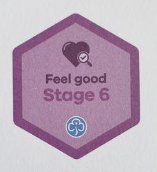 Feel Good Stage 6 Skill Builder