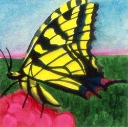 Yellow Tiger Swallowtail, Tempera, 4x4, Original Sold