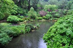 Pond, Portland Japanese Garden