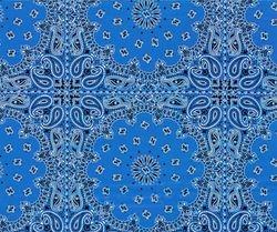 WTP 271 Blue Bandana