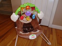 Fisher Price Deluxe Monkey Bouncer - $30