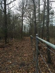 3/4 mile fence stretch down a property line