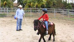 Young Rider Lunge Line Lesson