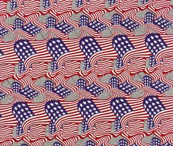 WTP 167 American Flag Newsprint