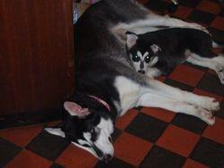 Tiva & Brooke