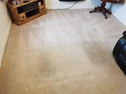 Lounge carpet clean