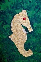 Oatmeal sea horse