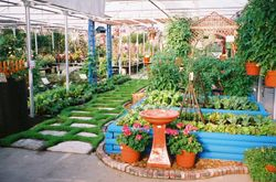 The 21st Century Victory Garden