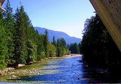 La rivière Chehalis
