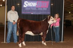 Grand Champion Overall Journagan Ranch Futurity