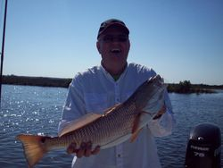 "Fat 26"" Redfish"