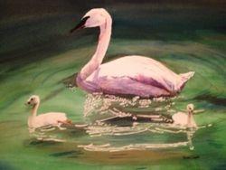 Swan at Storybook