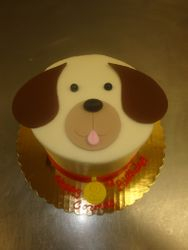 10 serving dog face $45