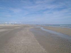 Alone on the beach on Cumberland Island