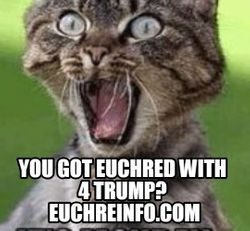 You got Euchred with 4 trump?