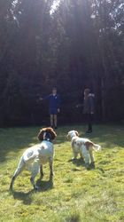 At the forest with Heston, Brodie and Henry
