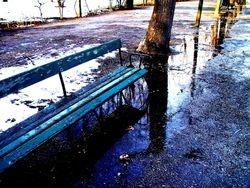 Schönbrunn bench