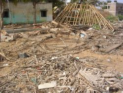 Coastal villages destroyed.