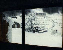 1990 Alpine Rally @ Perkins Flat - at Cabramurra