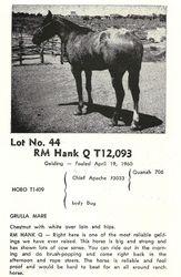 RM Hank Q