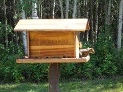 Gabriel's bird feeder
