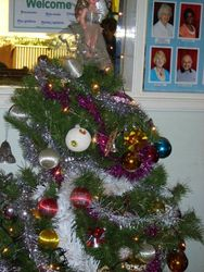 Christmas Tree in the Vestibule