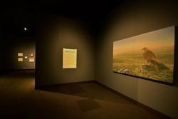 Royal Alberta Muesum Exhibition 2015